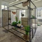 Musique pour plante verte / Morgane Tschiember